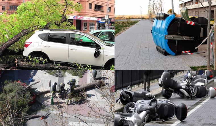 La Policía Local, después de varios días buscándolo, ha conseguido detener  al cierzo. Árboles caídos, farolas rotas o cubos de la basura volcados son  sólo ...