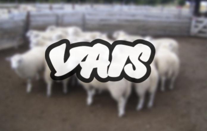 Vice se pasa a lo rural y saca su versión aragonesa: Vais