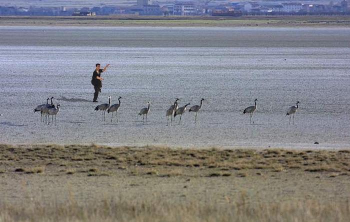 La técnica de la Grulla tiene su origen en la laguna de Gallocanta