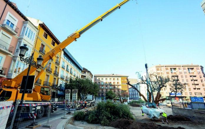 Paralizan las obras de la Plaza Salamero después de hallar los restos fósiles de un grupo haciendo botellón