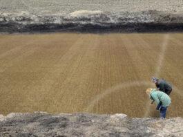 Arqueólogos encuentran una antigua Romareda en mejores condiciones que la actual